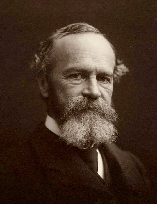 William James in 1903
