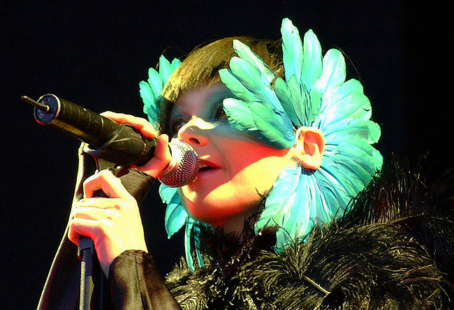 Björk at the Hurricane Festival