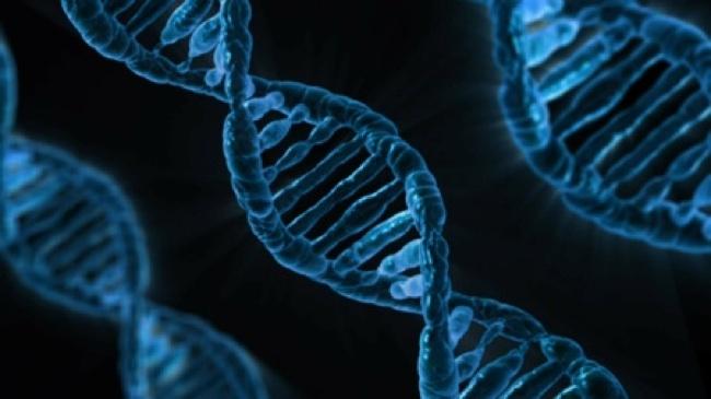 DNA strand image. Available via Pixabay.